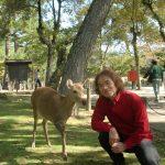 奈良に行きました